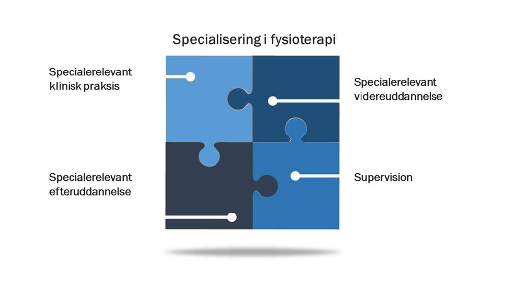 Specialiseringsordningens fire dele